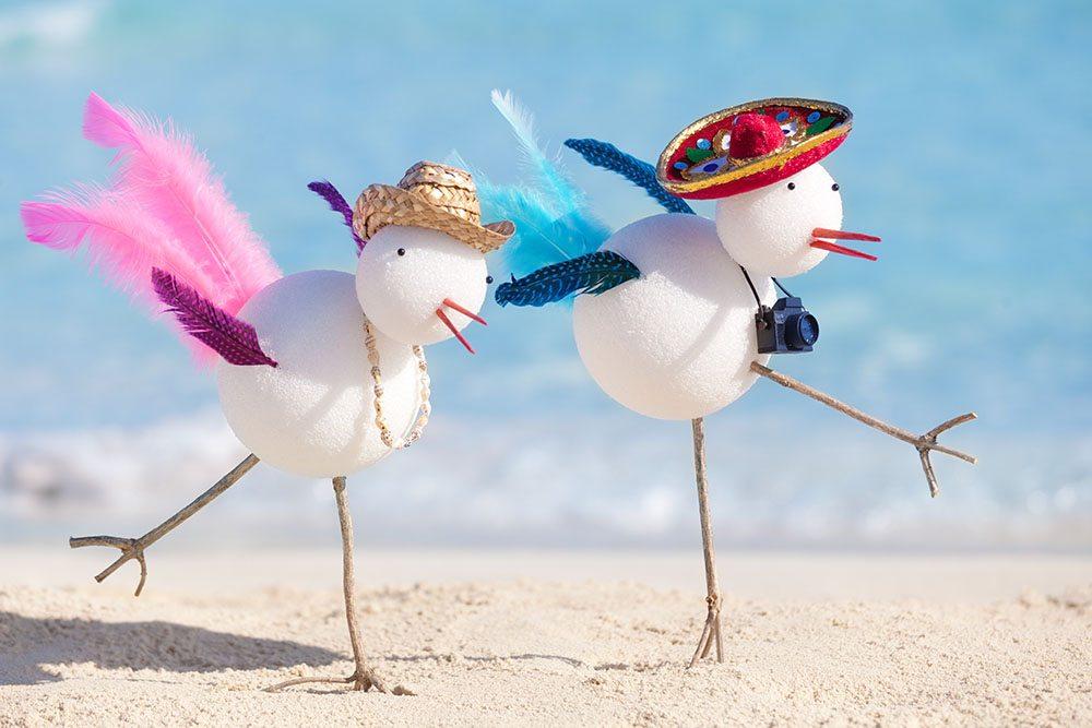 Gulf-Shores-Snowbirds-Beach-Vacation-Homes-in-Winter-Vacation
